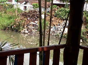 Limbah domestik yang mencemari air